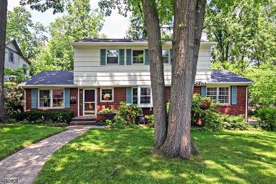 Livingston Twp. Single Family Home For Sale: 20 Sterling Dr