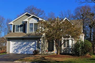 Bedminster Twp. NJ Single Family Home For Sale: $739,900