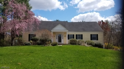 Bridgewater Twp. Single Family Home For Sale: 1364 Tullo Rd