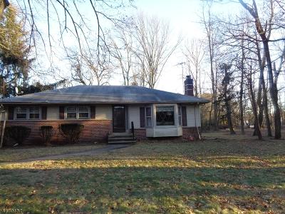 Scotch Plains Twp. Single Family Home For Sale: 890 Raritan Rd