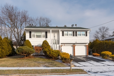 Mount Olive Twp. Single Family Home For Sale: 15 Brewster Pl