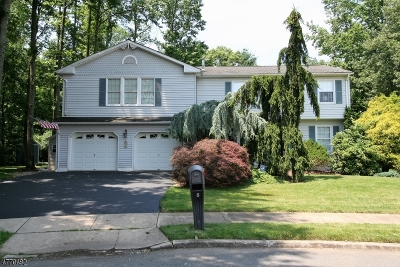 South Brunswick Twp. Single Family Home For Sale: 8 Tiby Pl