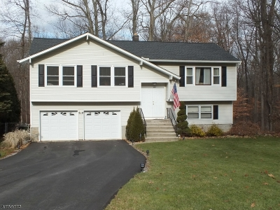 Mount Olive Twp. Single Family Home For Sale: 71 Deer Path Dr