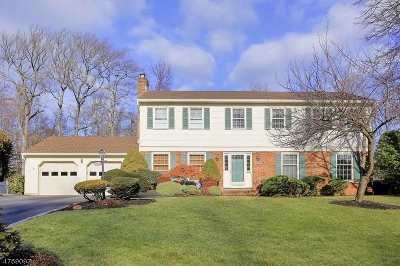 Westfield Town NJ Single Family Home For Sale: $895,000