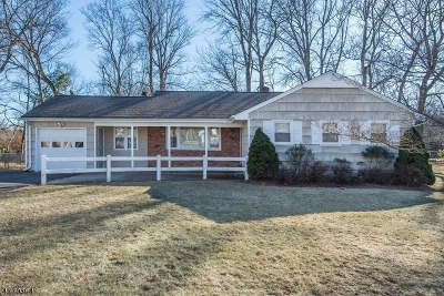Parsippany-Troy Hills Twp. Single Family Home For Sale: 40 Lord Stirling Dr