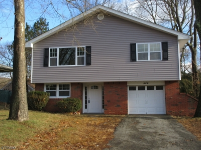 Roxbury Twp. Single Family Home For Sale: 544 Vail Rd