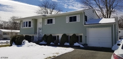 Roxbury Twp. Single Family Home For Sale: 22 George St