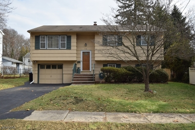 Scotch Plains Twp. Single Family Home For Sale: 2278 Jersey Ave