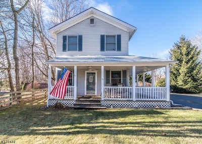 Mount Olive Twp. Single Family Home For Sale: 44 Main Rd