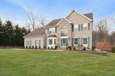 Mount Olive Twp. Single Family Home For Sale: 6 Andrea Ct