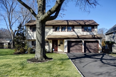 Cranford Twp. Single Family Home For Sale: 32 Carolina St
