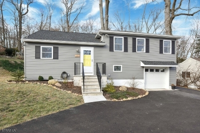 Morris Twp. Single Family Home For Sale: 10 Dellwood Ave