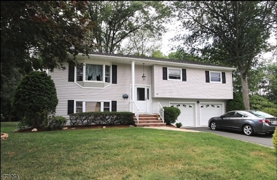 Roxbury Twp. Single Family Home For Sale: 14 Henry St