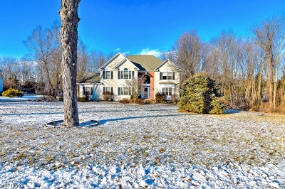 Sussex County Single Family Home For Sale: 4 Stone Bridge Dr