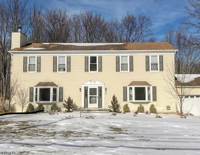 Randolph Twp. Single Family Home For Sale: 31 Calais Rd