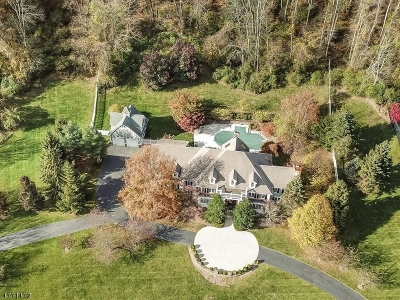 Morris County Single Family Home For Sale: 1 Deer Hill Rd