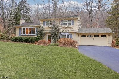 Morris Twp. Single Family Home For Sale: 31 Starlight Dr