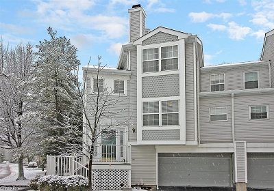 Morris County Condo/Townhouse For Sale: 501 Chandler Ln