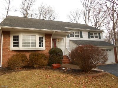 Morris Plains Boro Single Family Home For Sale: 9 Stony Brook Rd