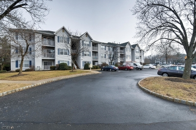 Somerset County, Morris County Condo/Townhouse For Sale: 505 Stratford Pl #505