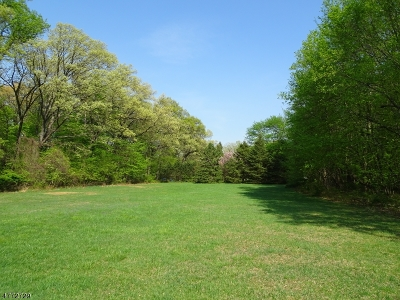 Chatham Boro, Chatham Twp., Chester Boro, Chester Twp., Harding Twp., Long Hill Twp., Mendham Boro, Morris Twp., Randolph Twp., Washington Twp., Bedminster Twp., Bernards Twp., Bernardsville Boro, Far Hills Boro, Peapack Gladstone Boro, Warren Twp. Residential Lots & Land For Sale: 5 Old Wood Lane S
