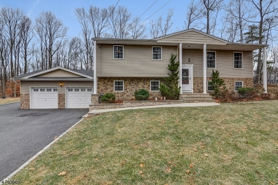 Warren Twp. Single Family Home For Sale: 44 Valley View Rd