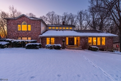 West Orange Twp. Single Family Home For Sale: 29 Ferris Dr