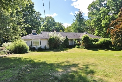 Mendham Boro, Mendham Twp. Single Family Home For Sale: 23 Dogwood Dr