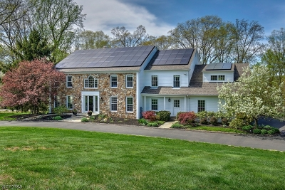 Peapack Gladstone Boro NJ Single Family Home For Sale: $1,395,000