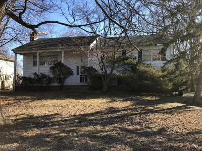 Livingston Twp. Single Family Home For Sale: 28 Rossmore Ter