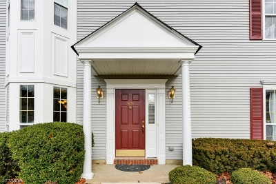 South Brunswick Twp. Condo/Townhouse For Sale: 505 Somerset Ct
