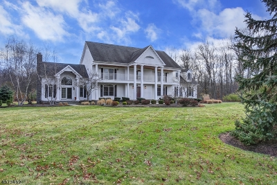 Bernards Twp. Single Family Home For Sale: 3 Emerald Valley Ln