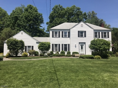 Florham Park Boro Single Family Home For Sale: 10 Village Rd