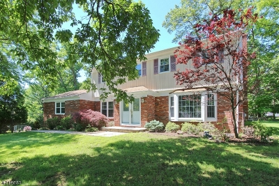 Berkeley Heights Single Family Home For Sale: 3 Branko Road