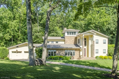 Mountainside Boro Single Family Home For Sale: 1082 Ledgewood Rd