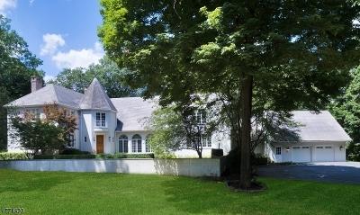 Bernardsville Boro Single Family Home For Sale: 43 Skyline Dr