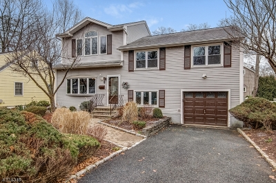 Chatham Boro Single Family Home For Sale: 66 Center Ave