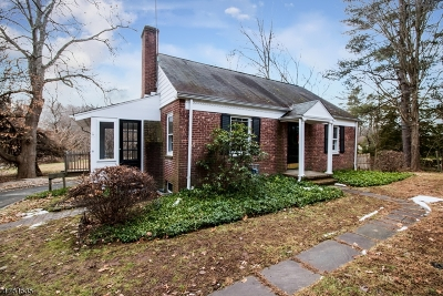Harding Twp. Single Family Home For Sale: 46 Blue Mill Rd