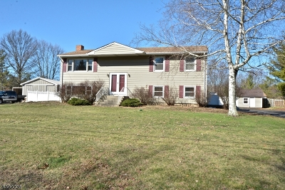 Kingwood Twp. Single Family Home For Sale: 7 Hampton Rd