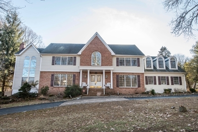 Chester Twp. Single Family Home For Sale: 22 Old Farmstead Rd
