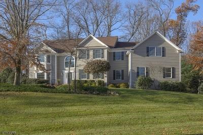 Bernardsville Boro Single Family Home For Sale: 6 Laurelwood Dr