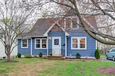 Bernardsville Boro Rental For Rent: 14 South St