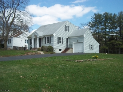 Bridgewater Twp. Single Family Home For Sale: 458 Country Club Rd