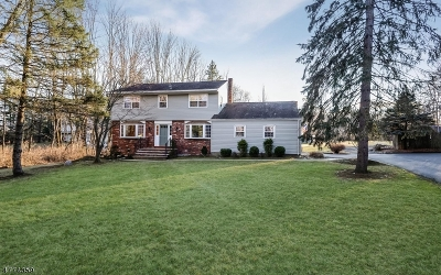 Chester Twp. Single Family Home For Sale: 9 Schoolhouse Lane