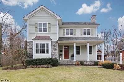 Westfield Town Single Family Home For Sale: 1050 Rahway Ave