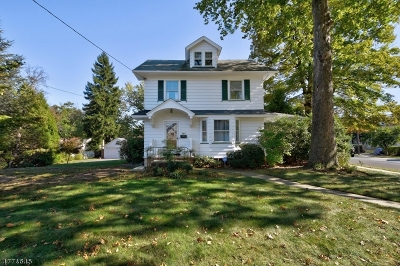 Westfield Town Single Family Home For Sale: 444 Mountain Ave