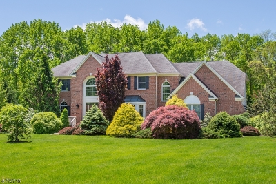 Chester Twp. Single Family Home For Sale: 5 Meadow Brook Rd