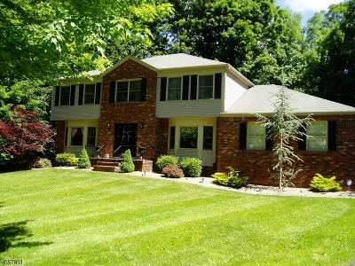 Randolph Twp. Single Family Home For Sale: 91 Pleasant Hill Rd