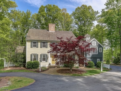 Chester Twp. Single Family Home For Sale: 10 Red Oak Row