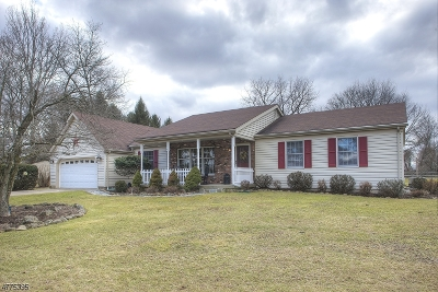 Holland Twp. Single Family Home For Sale: 269 Myler Rd
